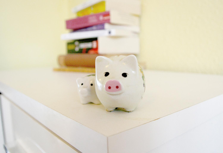 Schweine sind dumm? Von wegen