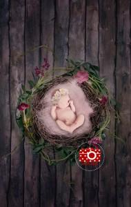 Digitaler Fotohintergrund für die Neugeborenenfotografie