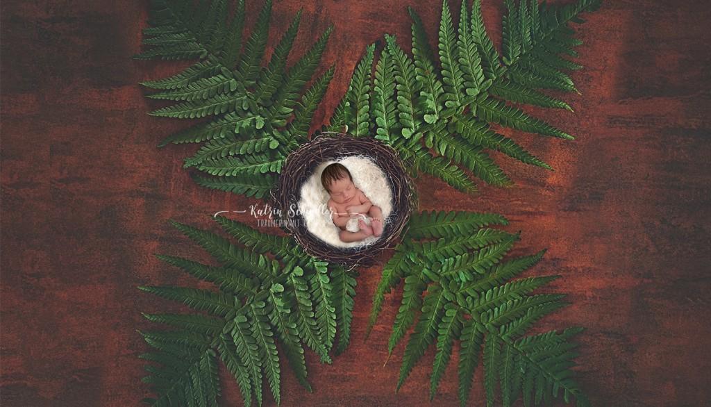 bildmontage_babyfotografie