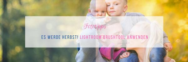 Herbstliche Bilder mit dem Lightroom Brushtool mogeln
