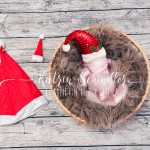 Christmas Newborn Composite