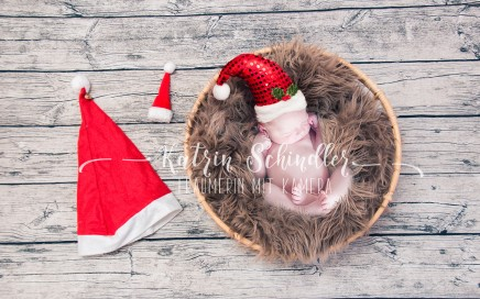 Christmas Newborn Composite
