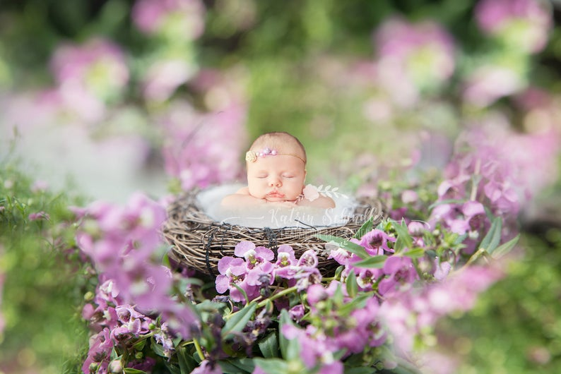 baby_digitaler_fotohintergrund