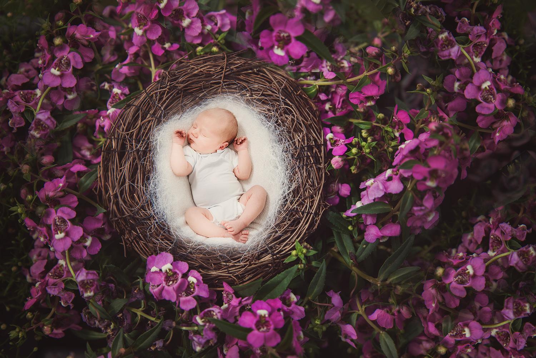 Bearbeitungsservice Babybild Montage