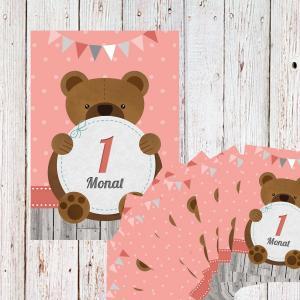 Milestone Cards Baby Geschenk