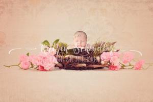 rosenkorb baby